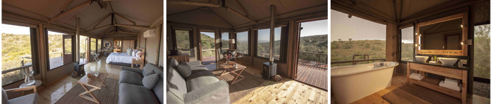 Bukela Game Lodge Amakhala Reserve New Safari Tents